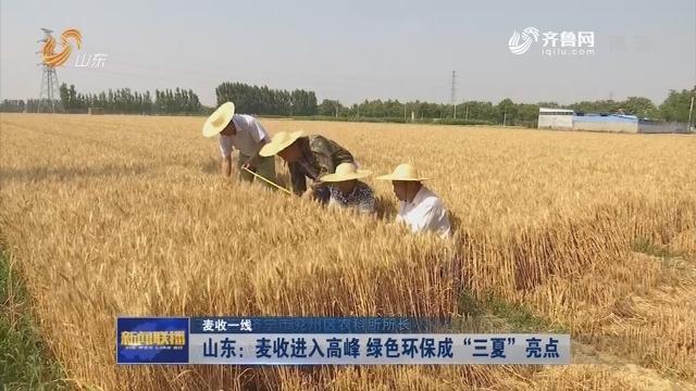 """【麦收一线】山东:麦收进入高峰  绿色环保成""""三夏""""亮点"""
