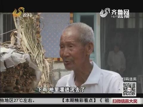 【中国式养老】高密:84岁老兵的重逢梦