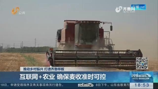 【推动乡村振兴 打造齐鲁样板】互联网+农业 确保麦收准时可控