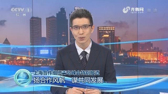 上海合作组织青岛峰会特别报道——扬合作风帆 谋共同发展
