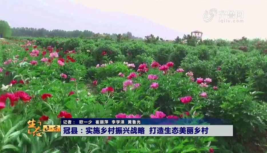冠县:实施乡村振兴战略 打造生态美丽乡村