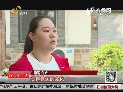 【乡村振兴 齐鲁样板】生态木兰:葡萄酒文化元素民宿