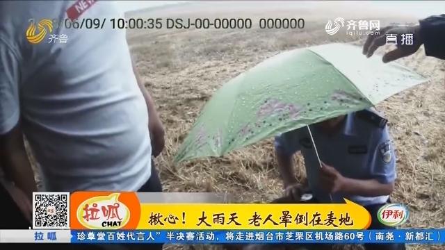 成武:揪心!大雨天 老人晕倒在麦地