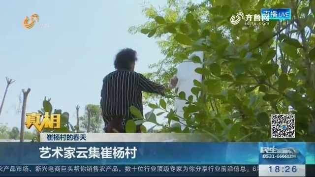 【真相】崔杨村的春天:艺术家云集崔杨村