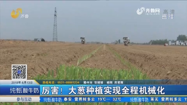 滕州:厉害!大葱种植实现全程机械化