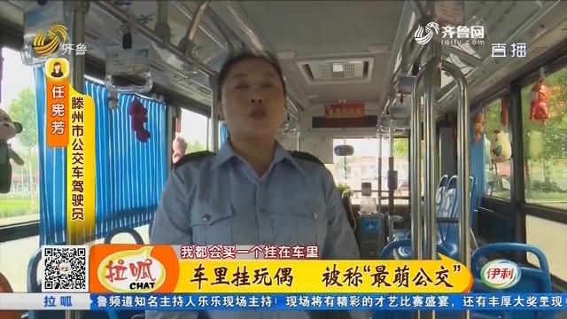 """滕州:车里挂玩偶 被称""""最萌公交"""""""
