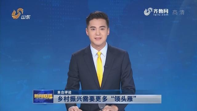 """【本台评论】乡村振兴需要更多""""领头雁"""""""