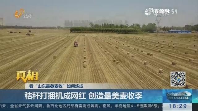 """【真相】看""""山东最美麦收""""如何炼成:秸秆打捆机成网红 创造最美麦收季"""