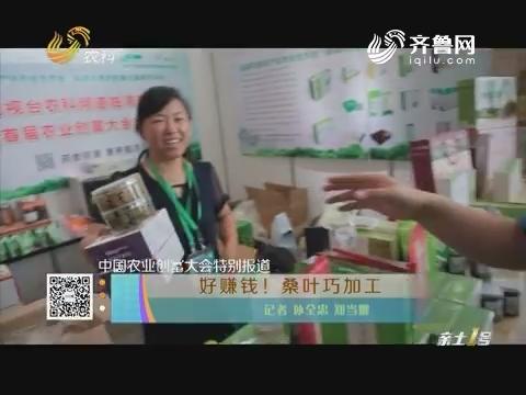 【中国农业创富大会特别报道】好赚钱!桑叶巧加工