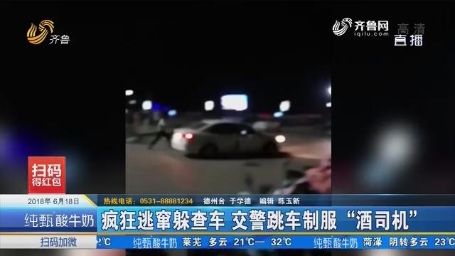 """乐陵:疯狂逃窜躲查车 交警跳车制服""""酒司机"""""""