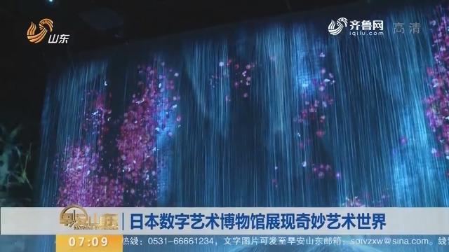 日本数字艺术博物馆展现奇妙艺术世界
