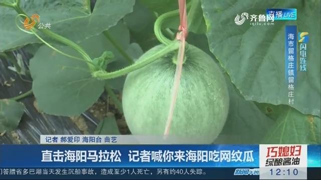 【闪电连线】直击海阳马拉松 记者喊你来海阳吃网纹瓜