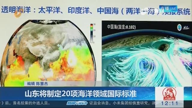 山东将制定20项海洋领域国际标准