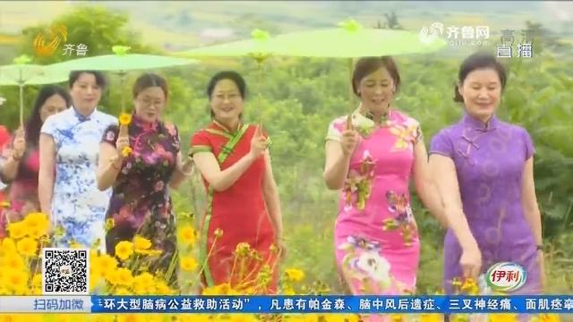 【齐鲁最美乡村】荣成:美!百亩花海摇金光