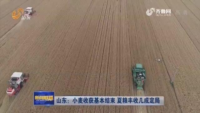山东:小麦收获基本结束 夏粮丰收几成定局