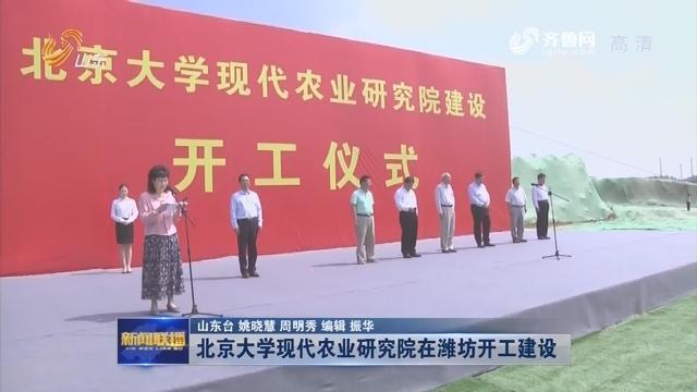 北京大学现代农业研究院在潍坊开工建设