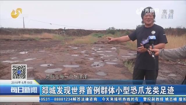 郯城发现世界首例群体小型恐爪龙类足迹