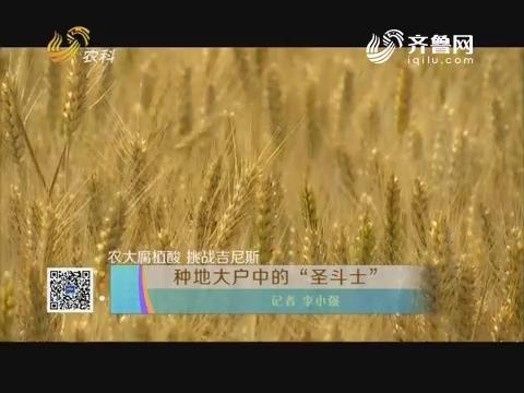 """【农大腐殖酸 挑战吉尼斯】种地大户中的""""圣斗士"""""""