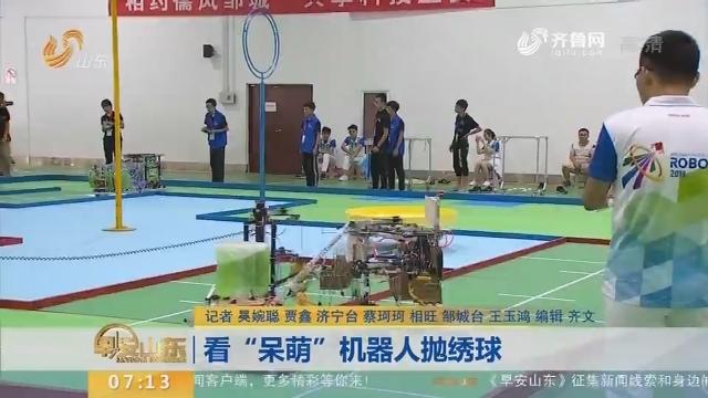 """【闪电新闻排行榜】看""""呆萌""""机器人抛绣球"""