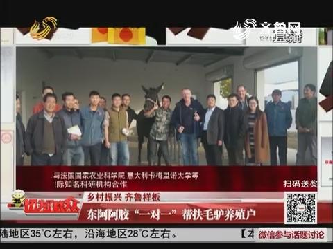 """【乡村振兴 齐鲁样板】东阿阿胶""""一对一""""帮扶毛驴养殖户"""