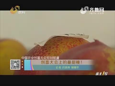 【中国农业创富大会特别报道】创富大会上的最甜桃!