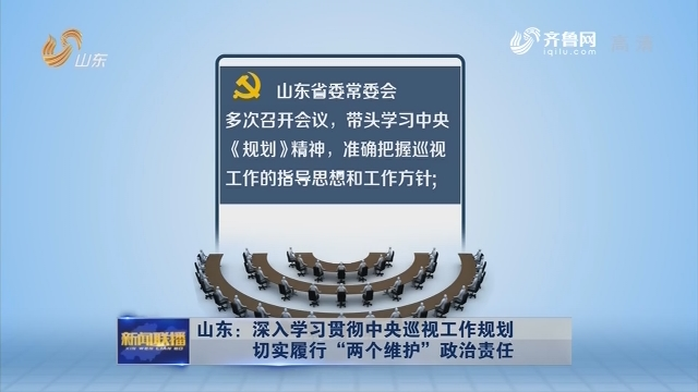 """山东:深入学习贯彻中央巡视工作规划 切实履行""""两个维护""""政治责任"""