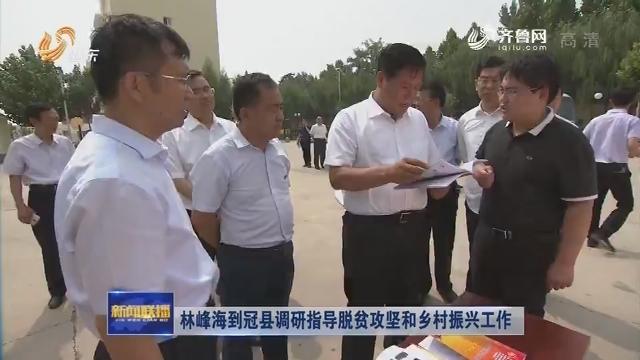 林峰海到冠县调研指导脱贫攻坚和乡村振兴工作