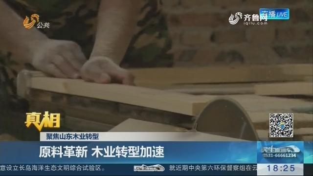 【真相】聚焦山东木业转型:原料革新 木业转型加速