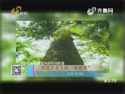 """【中国农业创富大会特别报道】创富大会上的""""熊猫茶"""""""