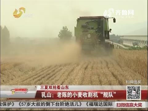 """【三夏双抢看山东】乳山:老陈的小麦收割机""""舰队"""""""