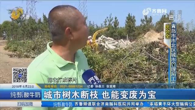 青岛:城市树木断枝 也能变废为宝