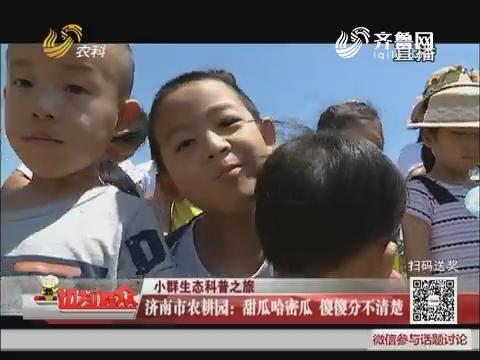 【小群生态科普之旅】济南市农耕园:甜瓜哈密瓜 傻傻分不清楚