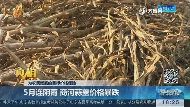 【真相】为农民兜底的目标价格保险 5月连阴雨 商河蒜薹价格暴跌