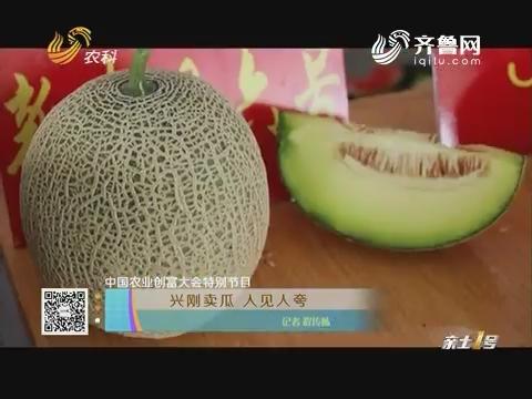 【中国农业创富大会特别节目】兴刚卖瓜 人见人夸