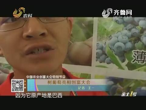 【中国农业创富大会特别节目】树葡萄亮相创富大会