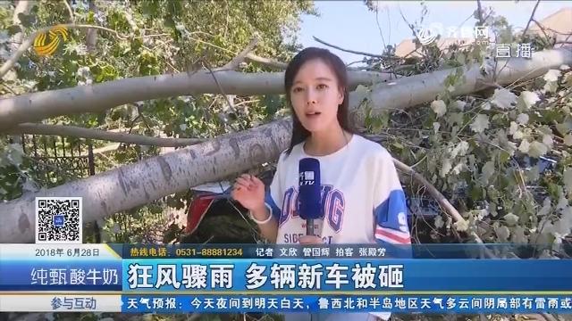 济南:狂风骤雨 多辆新车被砸