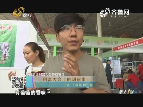【中国农业创富大会特别节目】创富大会上的甜蜜事业