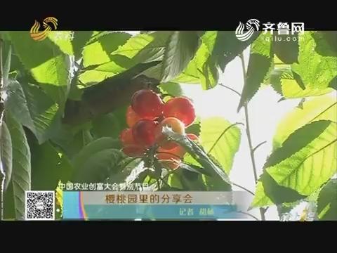 【中国农业创富大会特别节目】樱桃园里的分享会