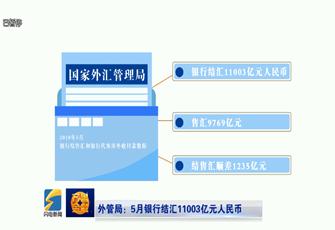 【齐鲁金融】外管局:5月银行结汇11003亿人民币《齐鲁金融》20180627播出