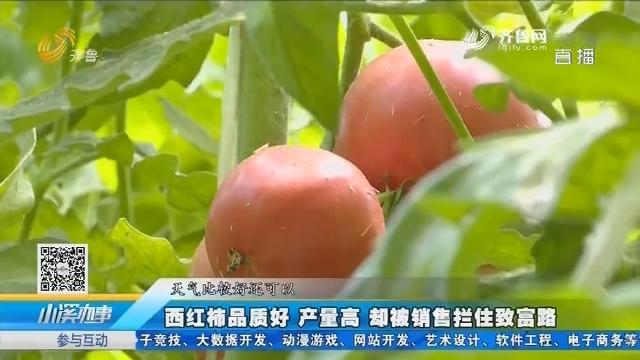 """郓城:第一书记""""盘活""""合作社 为农户打开销路"""