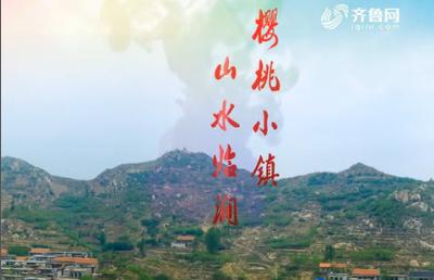20180527《唱响山东》:2018平邑林涧樱桃采摘旅游节