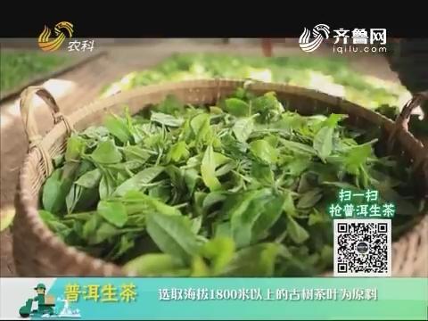 20180702《中国原产递》:普洱生茶