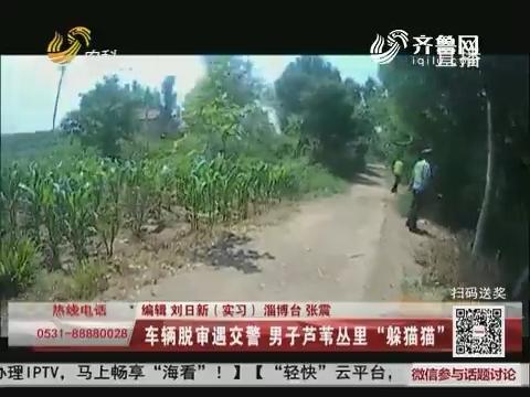 """淄博:车辆脱审遇交警 男子芦苇丛里""""躲猫猫"""""""