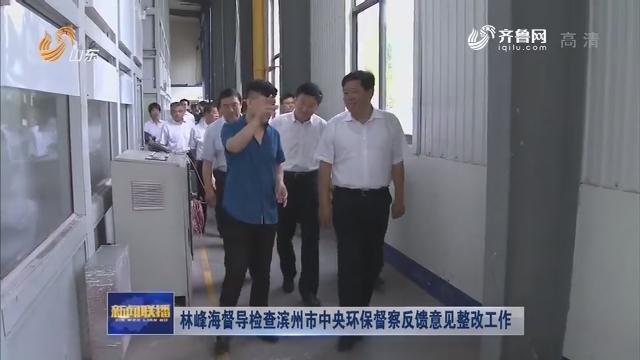 林峰海督导检查滨州市中央环保督察反馈意见整改工作