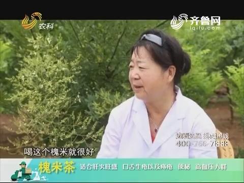 20180703《中国原产递》:槐米茶