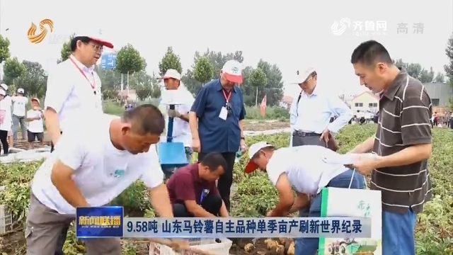 9.58吨 山东马铃薯自主品种单季亩产刷新世界纪录