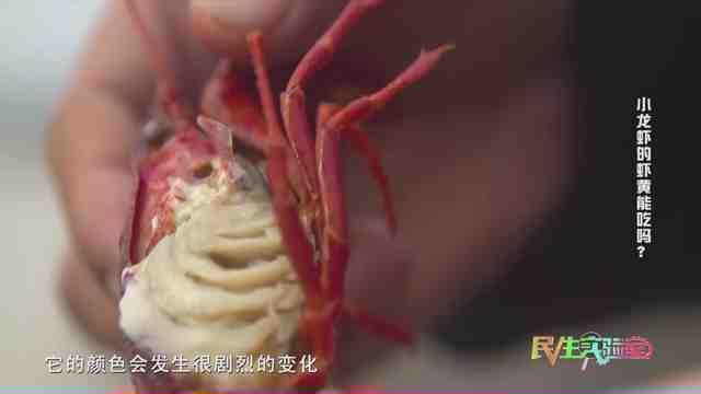 《生活大求真》:小龙虾的虾黄能吃吗?
