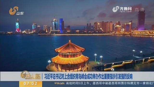 习近平总书记对上合组织青岛峰会成功举办作出重要指示引发强烈反响