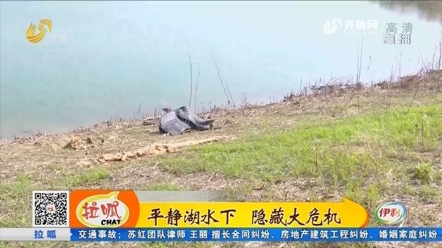 临淄:驯马师骑马下水 一人一马溺亡