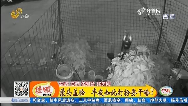 齐河:采花大盗 偷走发财树和花盆